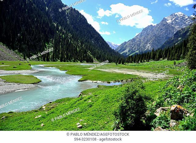 Karakol river in Karakol valley, Kirgyzstan