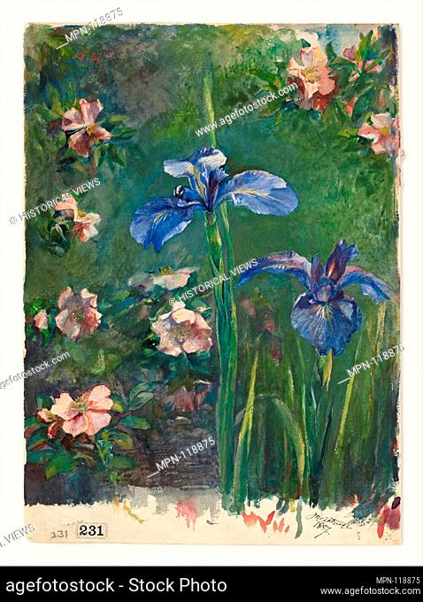 Wild Roses and Irises. Artist: John La Farge (American, New York 1835-1910 Providence, Rhode Island); Date: 1887; Medium: Gouache and watercolor on white wove...
