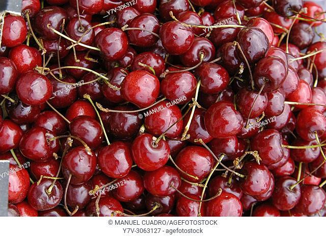Cherries. Market, Santiago de Compostela, La Coruña, Galicia, Spain
