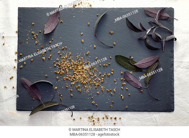 dried herbs on slate