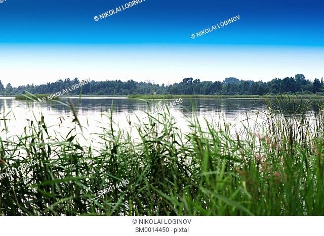 Classic Russian river bank landscape background hd