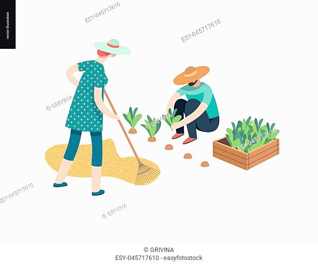 Harvesting people, fall - flat vector concept illustration of a man wearing straw hat gathering in ripe salad to the wooden box and a woman raking hay into the...