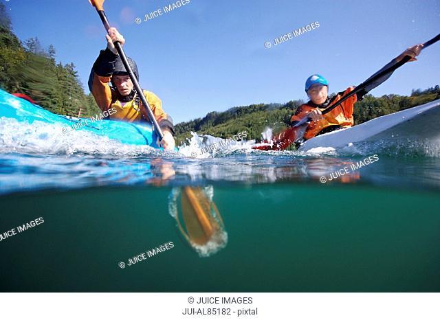 Surface shot of men paddling in kayaks