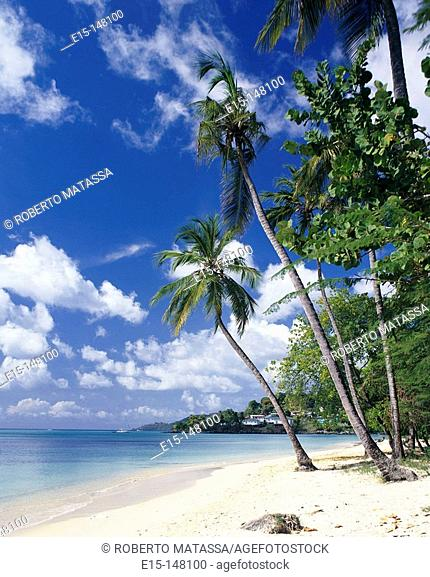 Grande Anse Beach. Grenada, West Indies, Caribbean