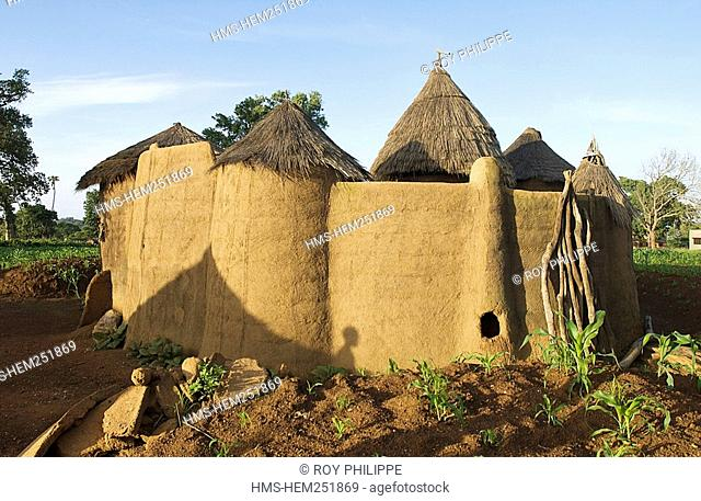 Benin, Atacora Department, Boukombe District, Koussoukoingou, millet field and fortified house of Tata Somba style, traditional housing in banco and thatched...
