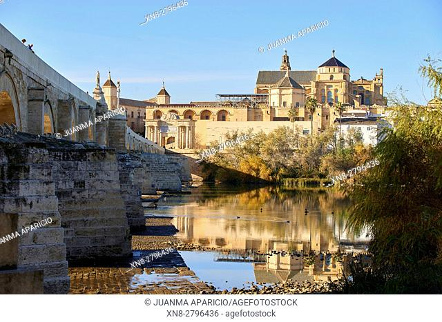 The Roman Bridge and Cordoba Mosque, Guadalquivir River, Cordoba, Spain, Europe