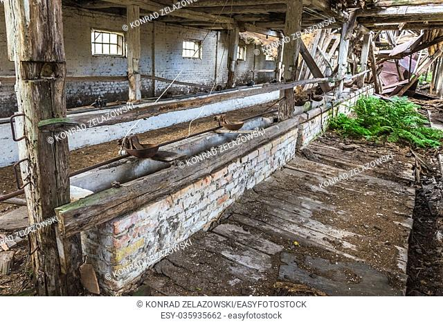 Feeding trough inside the pig house of old kolkhoz in abandoned Mashevo village of Chernobyl Nuclear Power Plant Zone of Alienation in Ukraine