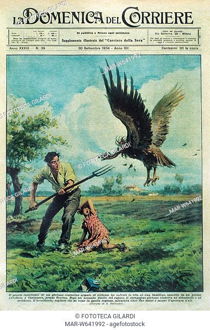 ITALIA Salvataggio di una bambina, assalita da un avvoltoio a Carbonera in provincia di Treviso, ad opera di un giovane armato di tridente