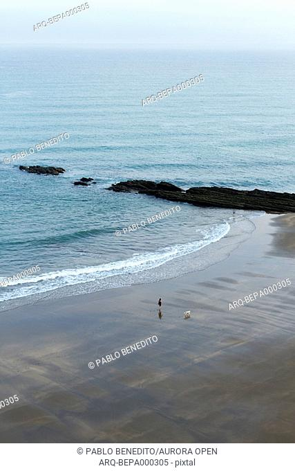 A woman goes for a morning walk with her dog at sunrise at low tide in Zumaia, Basque country (Spain)