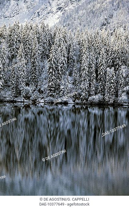Snowy landscape on the shore of the Lower Lake, Fusine Natural Park, Friuli-Venezia Giulia, Italy