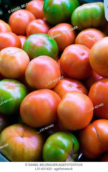 Tomatoes. Valencia, Comunidad Valenciana, Spain