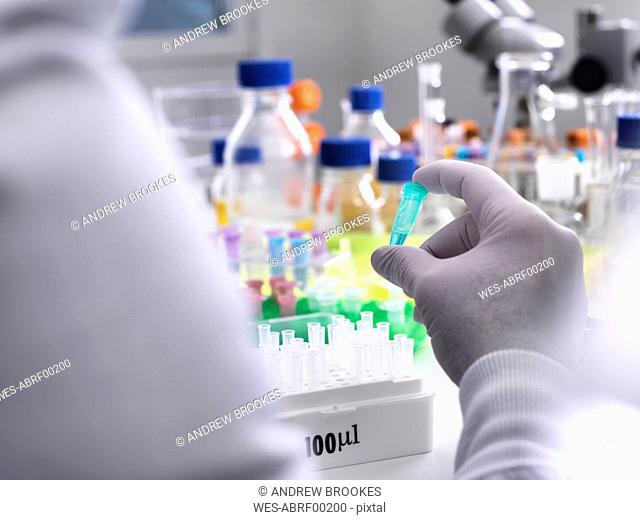 Biotechnology Research, Scientist viewing specimens in a vial during an experiment in the laboratory