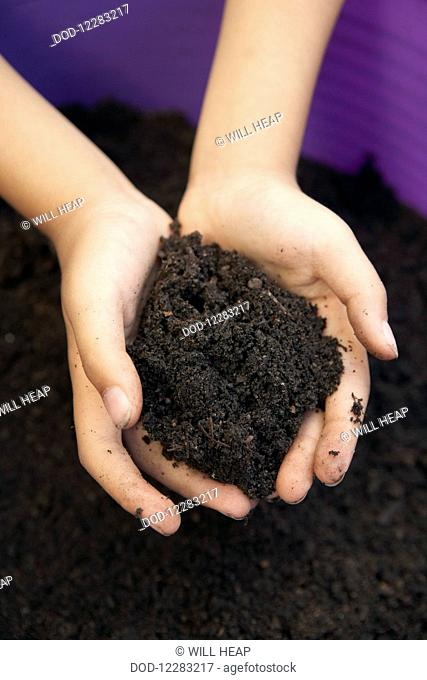 Child's hands holding pile of soil