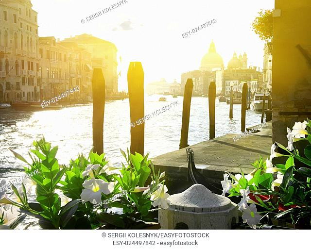 Flowers near the Grand Canal, Venice, Italy