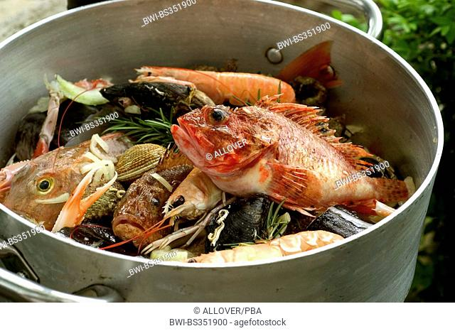 fish and seafood in a cooking pot