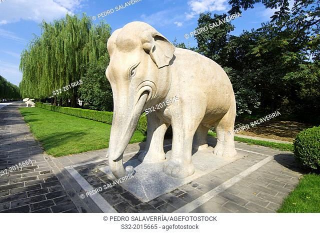 Statue of a Standing Elephant in The General Sacred Way of the Ming Tombs. It was built between 1435 and 1540. Shisanling, Beijing, China