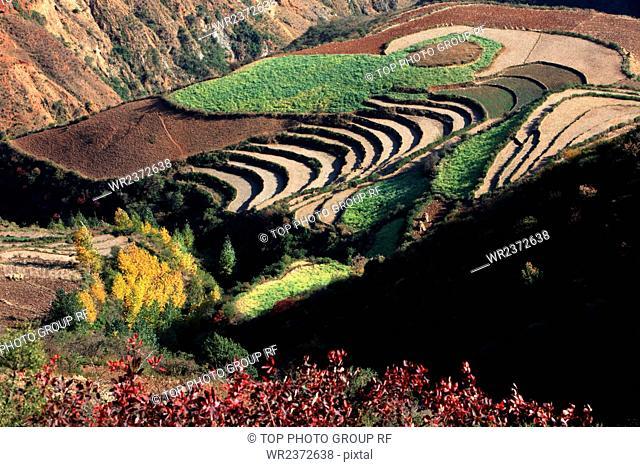 Kunming city Yunnan Province