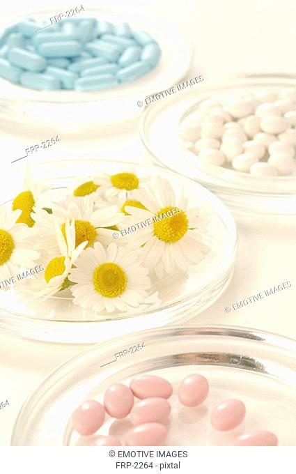 Camomile blossoms and pills