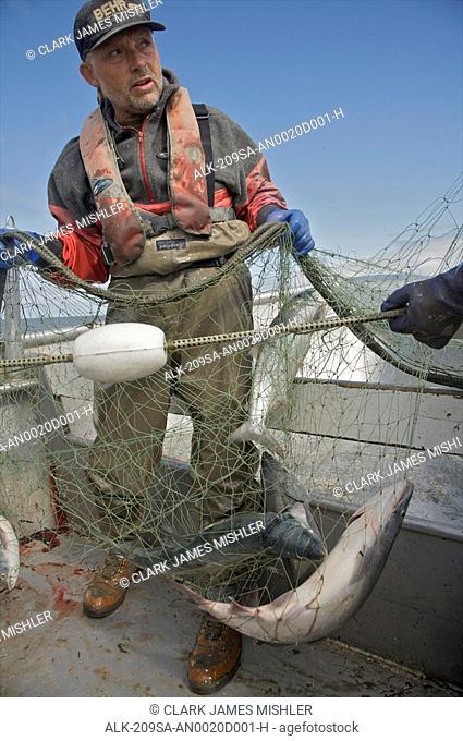 Bristol Bay set net commercial fishermen near Dillingham, Alaska