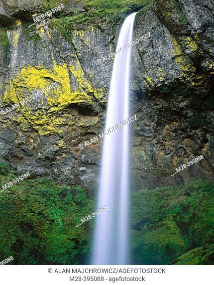 Elowah Falls. Columbia River Gorge National Scenic Area. Oregon. USA