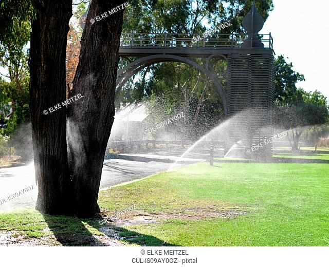 Rows of sprinklers watering park lawns