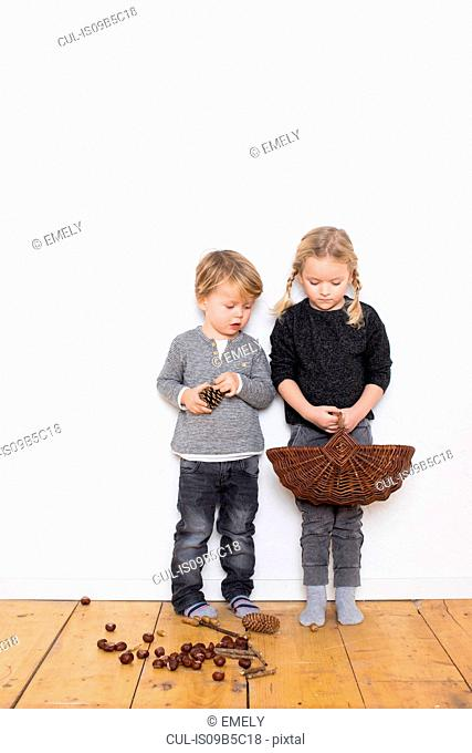 Young girl and boy, girl holding wicker basket, boy holding pine cone, pine cones and conkers on floor