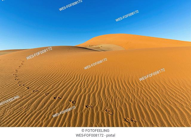 Namibia, Namib Desert, Namib Naukluft National Park, tracks of gemsbok in the sand of a dune