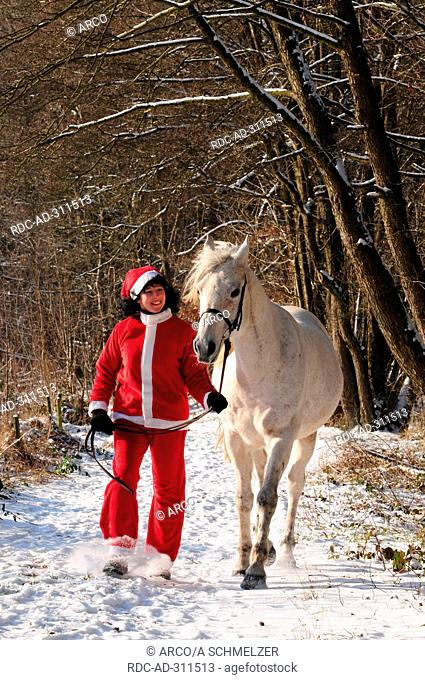 Woman leading Arabian Horse, gelding / Santa Claus suit