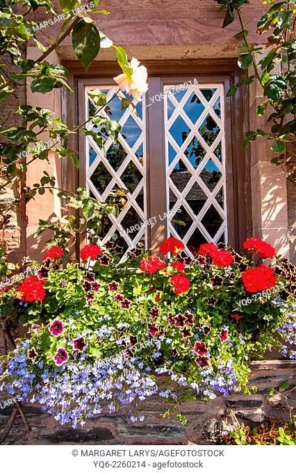 Beautiful flower decoration outside a scottish house