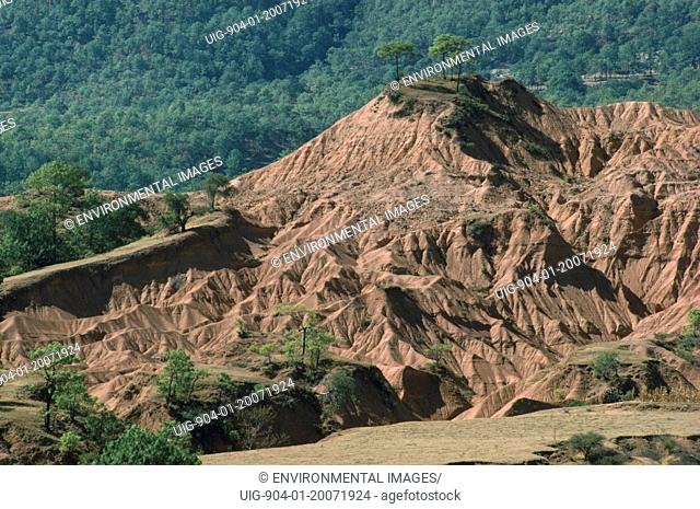 MEXICO Environment Erosion. Severe soil erosion near Tehuantepec.
