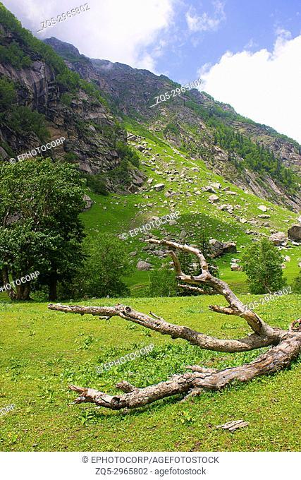 Landscape. Kinnaur district of Himachal Pradesh, Northern India