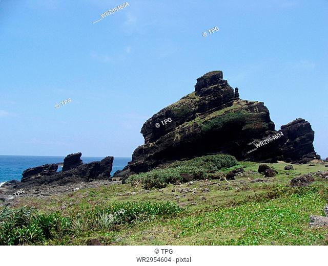 Orchid Island Crocodile Rock