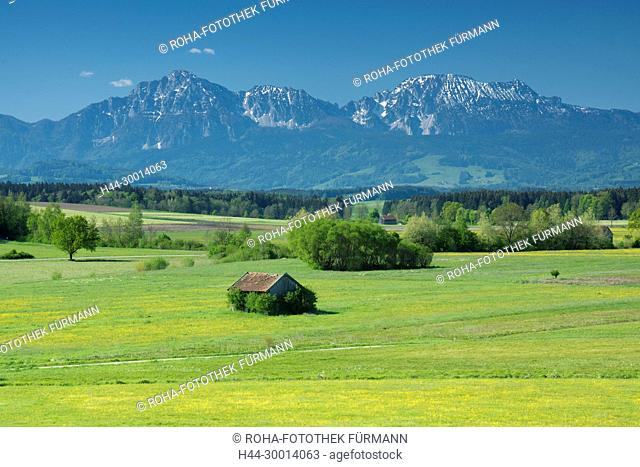 Stadel im Haarmoos bei Leobendorf mit dem Zwiesel im Hintergrund