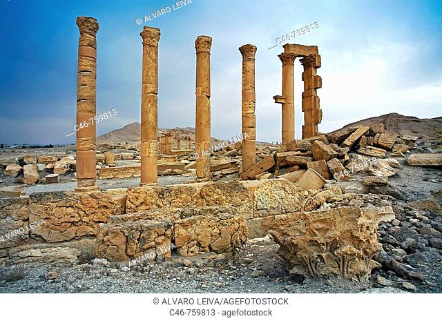 Ruins of the old Greco-roman city of Palmyra, Syria