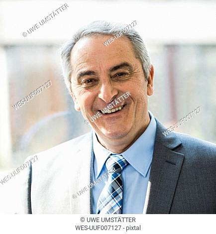 Portrait of smiling senior businessman