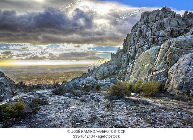 Collado Alfrecho en la Sierra de la Cabrera  Comunidad de Madrid  España