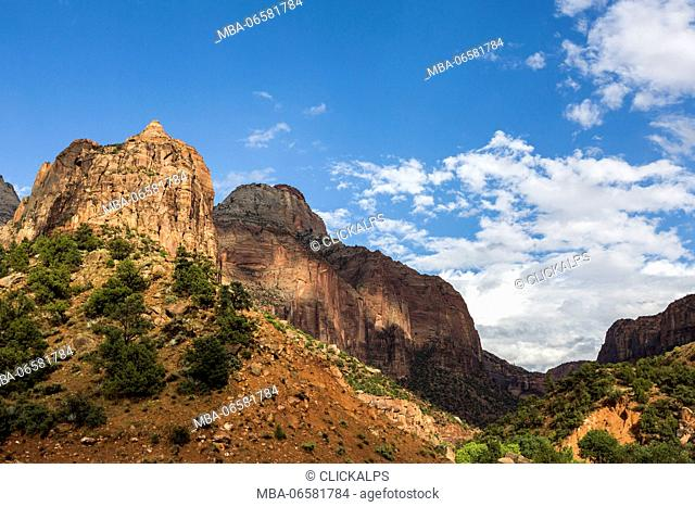 Rock formations at Zion National Park, Hurricane, Washington County, Utah, USA