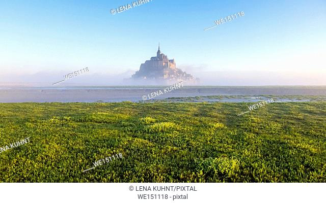 France, Normandy (Normandie), Manche department, Le Mont-Saint-Miichel at dawn covered in fog