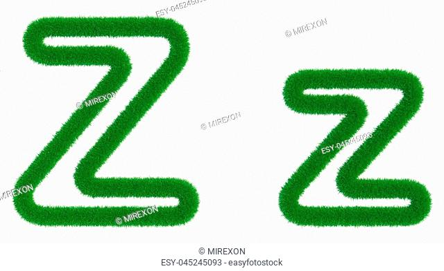 Letter Z of green fresh grass isolated on a white background. 3d rendering