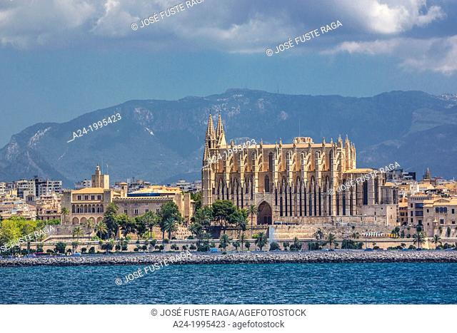 Spain , Mallorca Island, Palma City , La Seu Cathedral and La Almunia palace