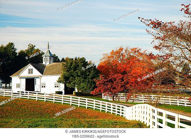 Autumn on a horse farm, Kentucky