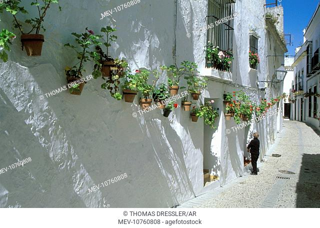 Spain - Many of the brilliant-white alleyways of the 'White Village' of Arcos de la Frontera are lined with geranium pots