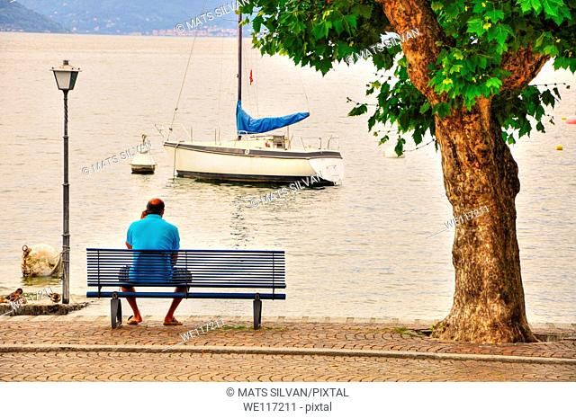 Man sitting on a bench on lake front with a tree and a sailing boat