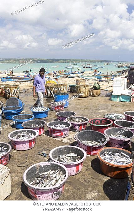 Baskets with daily catch at Jimbaran fish market, Bali, Indonesia