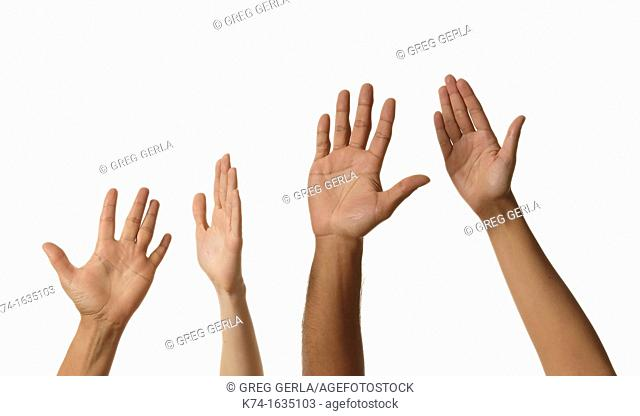 four arms reaching up into the air with a white background