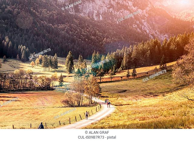Distant view of adults and children walking along winding valley road, Bavaria, Germany