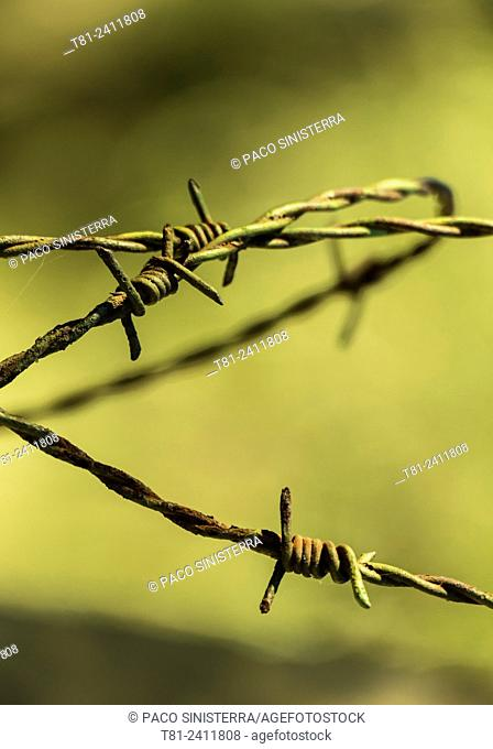 Barbed wire in Asturias, Spain