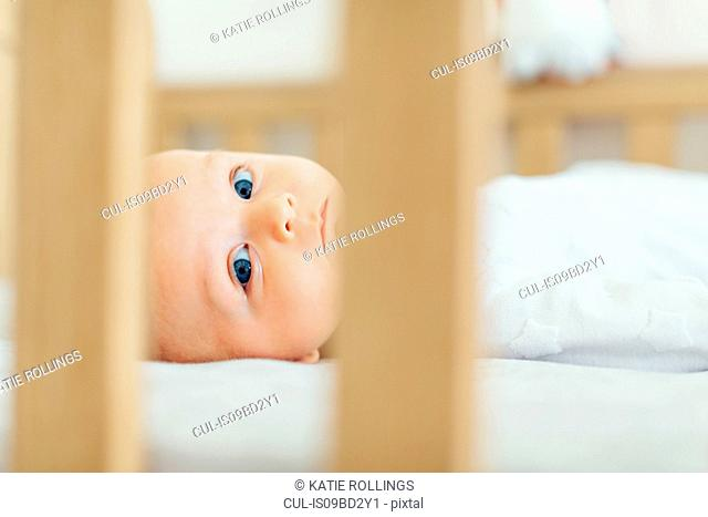 View through cot of baby boy lying down looking at camera