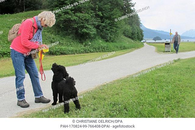Picture of Christa Alder and her dog Henry, taken at a meadow near Sils lake in the canton of Graubunden, Switzerland, 21 July 2017