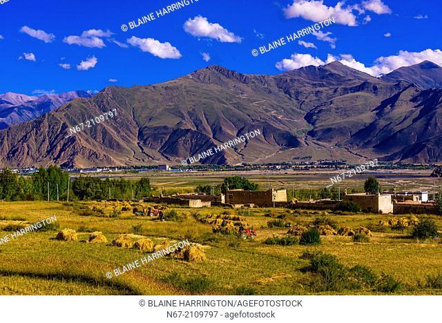 Dagze, Yerpa Valley, Tibet (Xizang), China